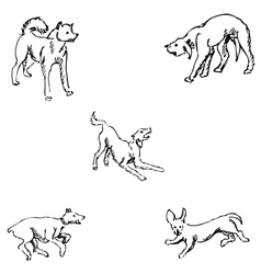 Dogs Sketch pencil Drawing by hand vector image
