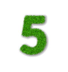 Grass number five green 3d number five isolated vector