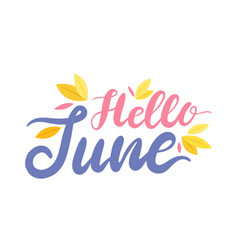Hello june colorful banner with lettering and vector