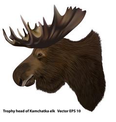 Kamchatka moose vector