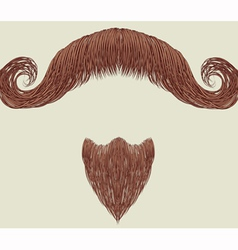 mustache and beard vector image
