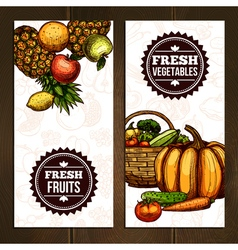 Vegetables And Fruits Vertical Banners vector image