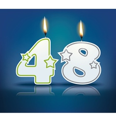 Birthday candle number 48 vector image