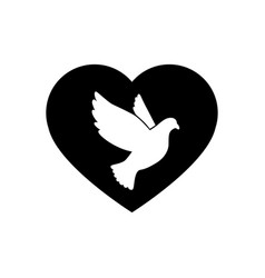 Black silhouette flying dove with heart vector