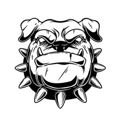 boxer dog head in vintage monochrome style design vector image