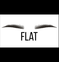 Flat trendy hand drawn brows shape vector
