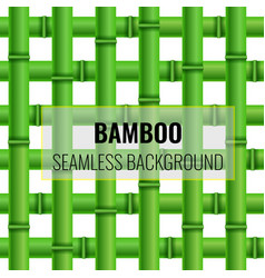 green bamboo weaving seamless pattern background vector image