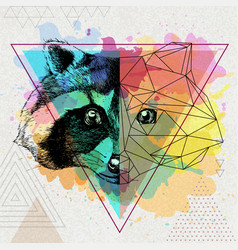 Hipster animal realistic and polygonal raccoon on vector