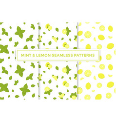Lemon and mint colorful seamless patterns vector