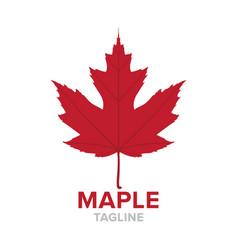 maple logo vector image