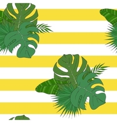 the leaves tropical palm trees pattern vector image