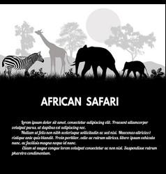 african safari poster vector image