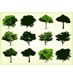 Collection green trees vector image vector image