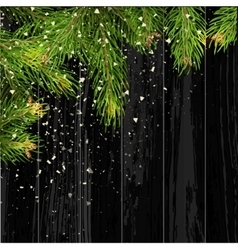 Christmas card background with fir tree and vector image