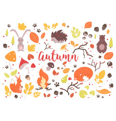 collection colorful autumn leaves branches vector image
