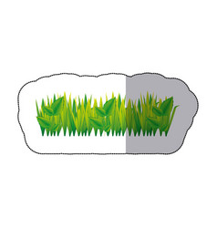 Color grass with leaves icon vector