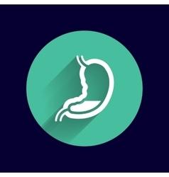 Human stomach icon human cross intestinal vector