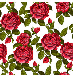 Red rose seamless pattern for your design vector