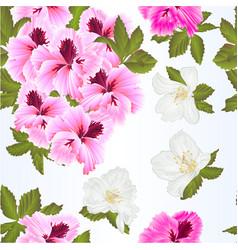seamless texture pelargonium geranium vector image