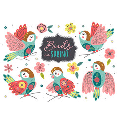 set isolated beautiful spring birds vector image
