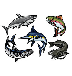 Set of fish in colored vector