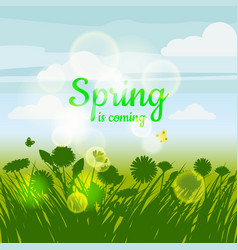 spring is coming green field flowers sky vector image