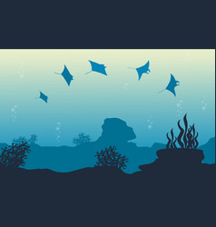Underwater landscape of stingray vector