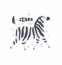 zebra hand drawn poster vector image