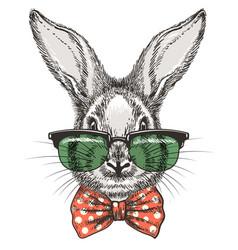 rabbit in glasses sketch portrait vector image vector image