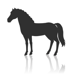 Horse in Flat Design vector image vector image