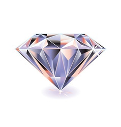 cut diamond with shadow vector image vector image