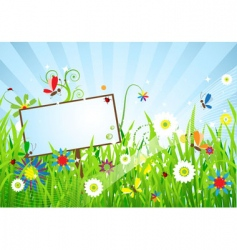 summer meadow beautiful vector image vector image