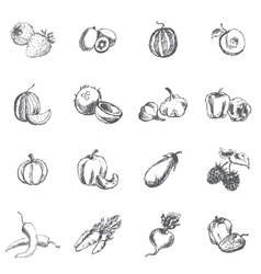 Vegetables berries and fruits vector image