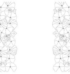 alcea rosea outline border - hollyhocks vector image