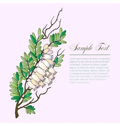 Bearberry twig with flowers vector