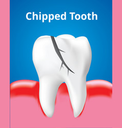 Chipped tooth with inflamed gum dental care vector