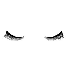 Eyelash icon black color flat style simple image vector