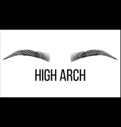 High arch hand drawn brows shape vector