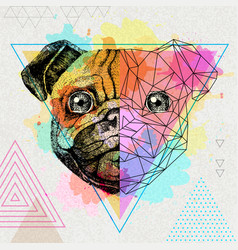 Hipster animal realistic and polygonal pug-dog on vector