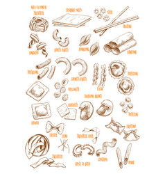 Sketch icons set of italian pasta variety vector