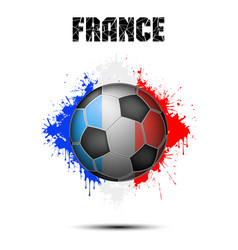 soccer ball in the color of france vector image