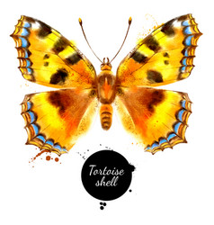 watercolor butterfly aglais urticae small vector image