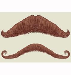 mustache set vector image