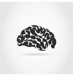 Brain6 vector image vector image