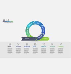 Agile development process infographic vector