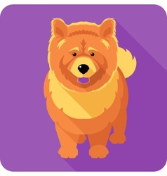 Dog chow-chow icon flat design vector