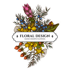 floral bouquet design with colored juniper vector image