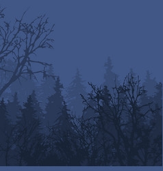 Foggy forest in gloomy landscape natural outdoor vector