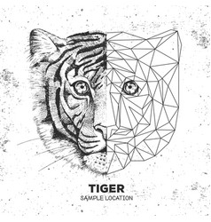 Hipster animal realistic and polygonal tiger face vector