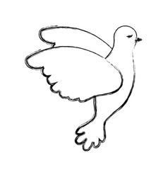 pigeon peace flying in side view on blurred vector image